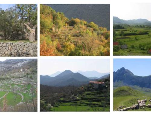 Preporuke za poboljšanje okvira za zaštitu, planiranje i obnovu tradicionalnih poljoprivrednih pejzaža u Crnoj Gori