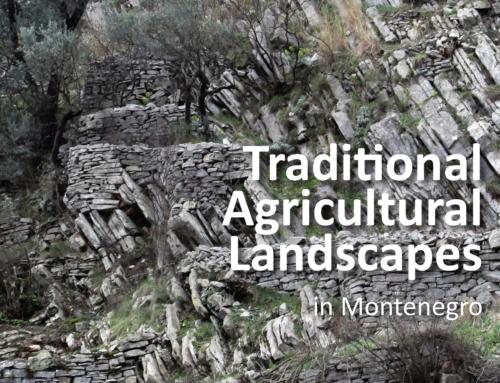 """Brošura """"Tradicionalni poljoprivredni pejzaži"""" na engleskom jeziku"""